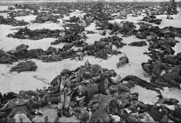 битва за сталинград1