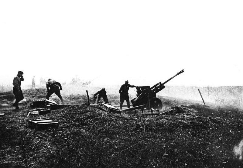 битва за сталинград31