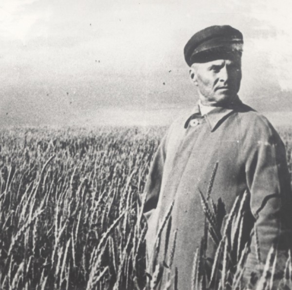 орловский в поле