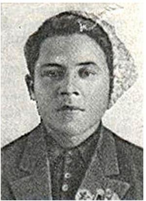 Кипенко десант Ольшанского