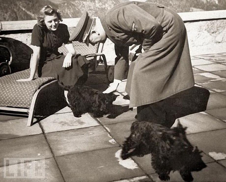 Гитлер и Ева Браун со своими шотландскими терьерами.