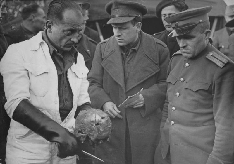 Голландский врач-патологоанатом показывает представителю СССР старшему лейтенанту Н.Н. Сагарову череп советского пленного, казненного в концлагере Амерсфорт (Amersfoort).