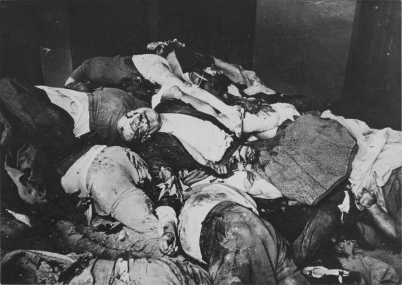 Гора тел жителей Львова, убитых нацистами во время погромов.