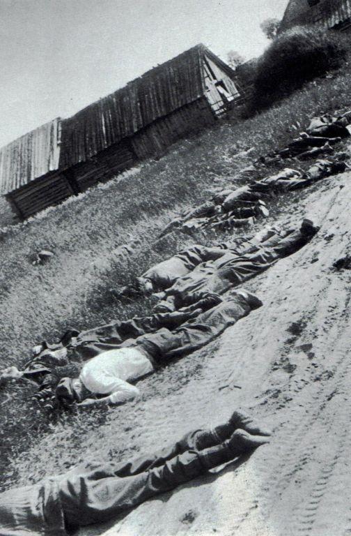 Мирные советские сельские жители, подростки, убитые фашистами. 1941г