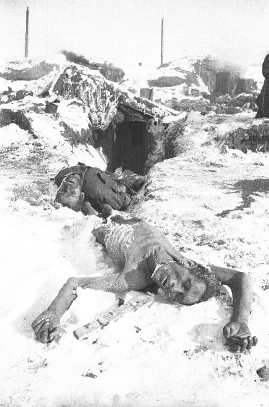 Погибшие от голода и холода пленные красноармейцы в лагере в селе Большая Россошка под Сталинградом