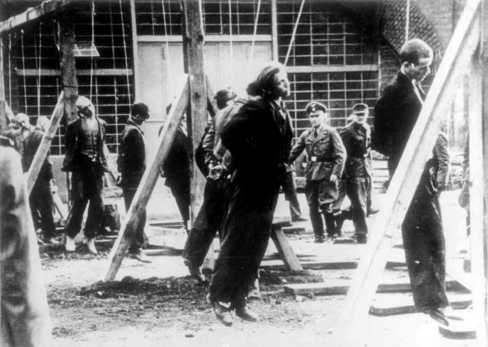 Повешенные сотрудниками гестапо в лагере Кельн-Эренфельд (Köln-Ehrenfeld) одиннадцать советских подневольных рабочих. Время съёмки 25.10.1944