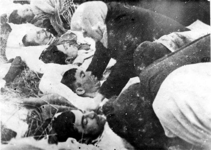 Расстрелянные немцами перед отступлением местные жители. Декабрь 1943—январь 1944 года.