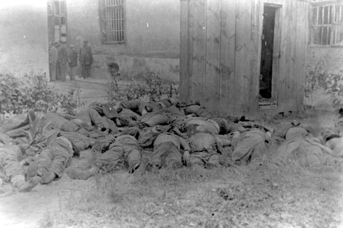 Тела евреев, расстрелянных во время погромов во дворе тюрьмы Львова. Июнь-июль 1941 г.