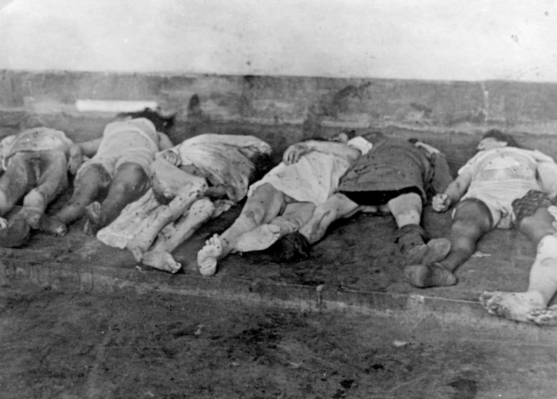 Тела евреев, убитых нацистами во время погромов во Львове.