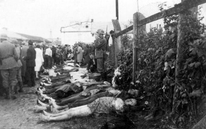 Тела убитых евреев на одной из улиц Краковского гетто