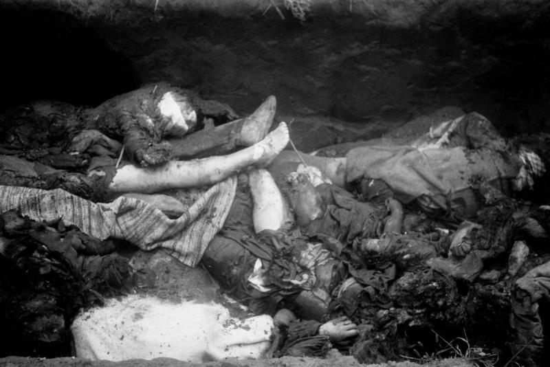 Тела убитых гитлеровцами советских людей в освобожденной Полтаве.