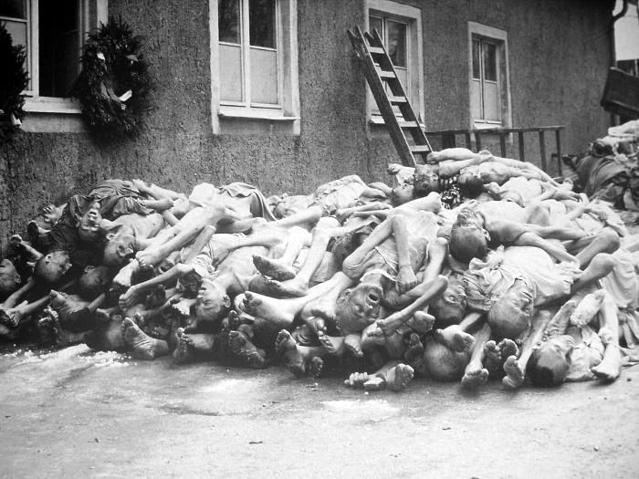 Тела узников концентрационного лагеря Бухенвальд (Buchenwald). 1945г.