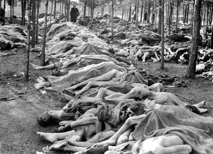 Тела узников концлагеря Берген-Бельзен в лесу перед похоронами. Время съёмки апрель 1945г