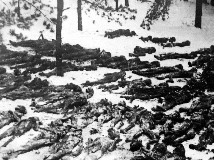 Трупы советских граждан, обнаруженные на территории гитлеровского концлагеря в Дарнице. Район Киева, ноябрь 1943 г