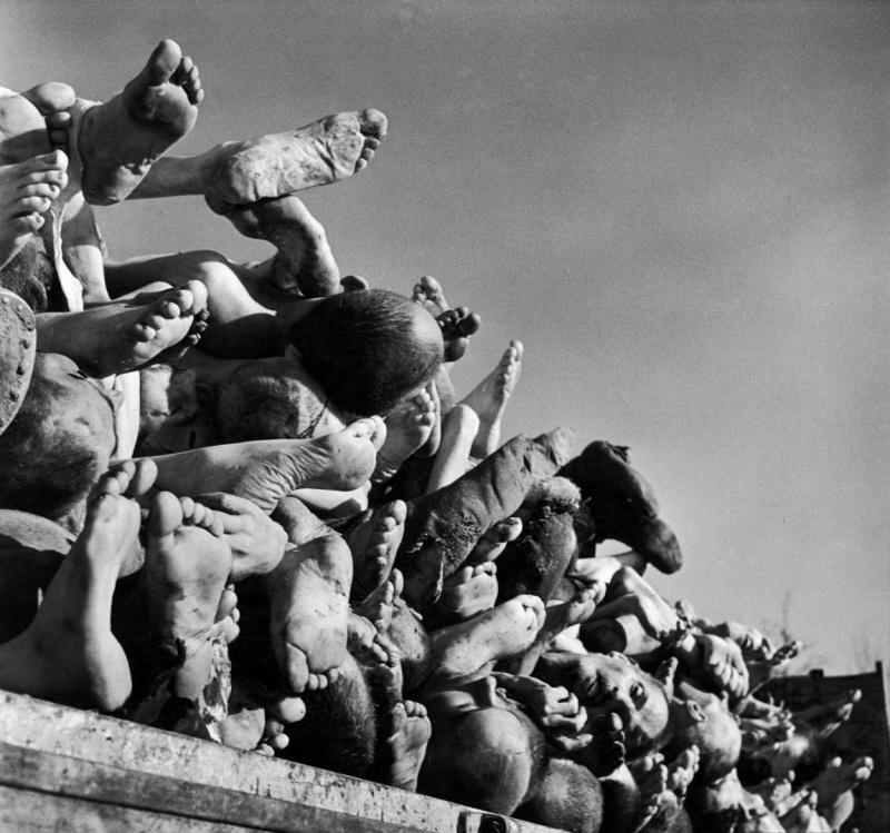 Трупы узников концентрационного лагеря Бухенвальд, приготовленные для сжигания в крематории, в кузове прицепа.