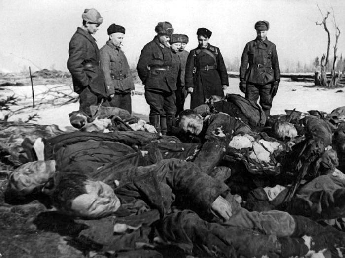 Трупы замученных гитлеровцами пленных красноармейцев. Окрестности города Кириши, зима 1941—1942 годов