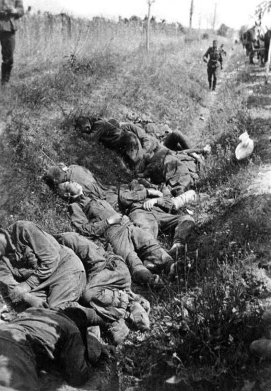 Убитые пленные красноармейцы в придорожном кювете