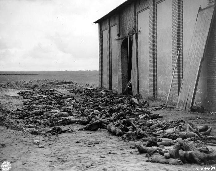 Узники концлагеря Гарделеген (Gardelegen), убитые охраной незадолго до освобождения лагеря.22.04.1945г.