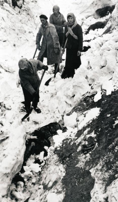 Женщина откапывает тело убитого немцами в Багеровском рву под Керчью.