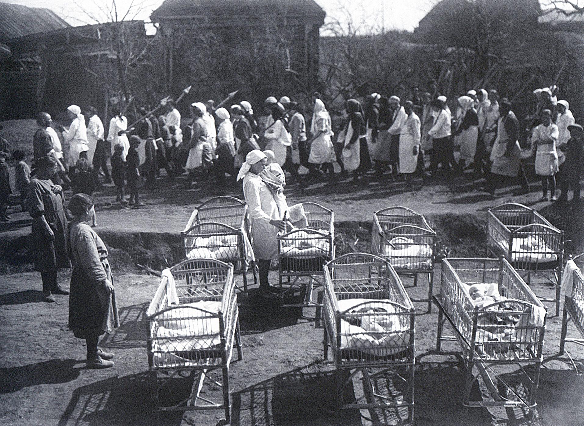Колхоз Новая Жизнь. 1931. Шагин