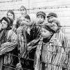Зверство банковского (гитлеровского) фашизма. Детская фабрика крови для гитлеровцев - концлагерь смерти Саласпилс. 18+