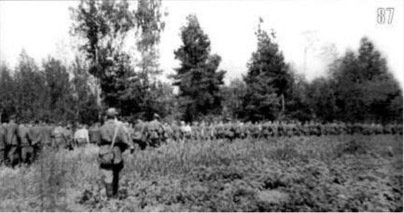 boi-tsy-voi-sk-nkvd-konvoiruyut-v-tyl-plennyh-vzyatyh-v-boyah-pod-elnei-sentyabr-1941