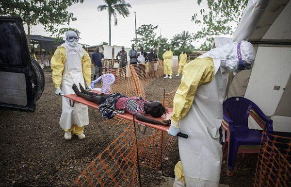 вирус эбола2