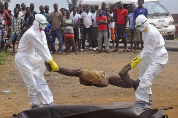 вирус эбола7